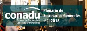 cabezal_plenario