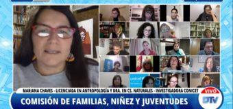 Expertas y expertos de la universidad intervinieron en la Comisión de Familias, Niñez y Juventudes de la Cámara de Diputados y Diputadas de la Nación