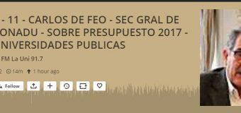 Carlos De Feo en FM La Uni